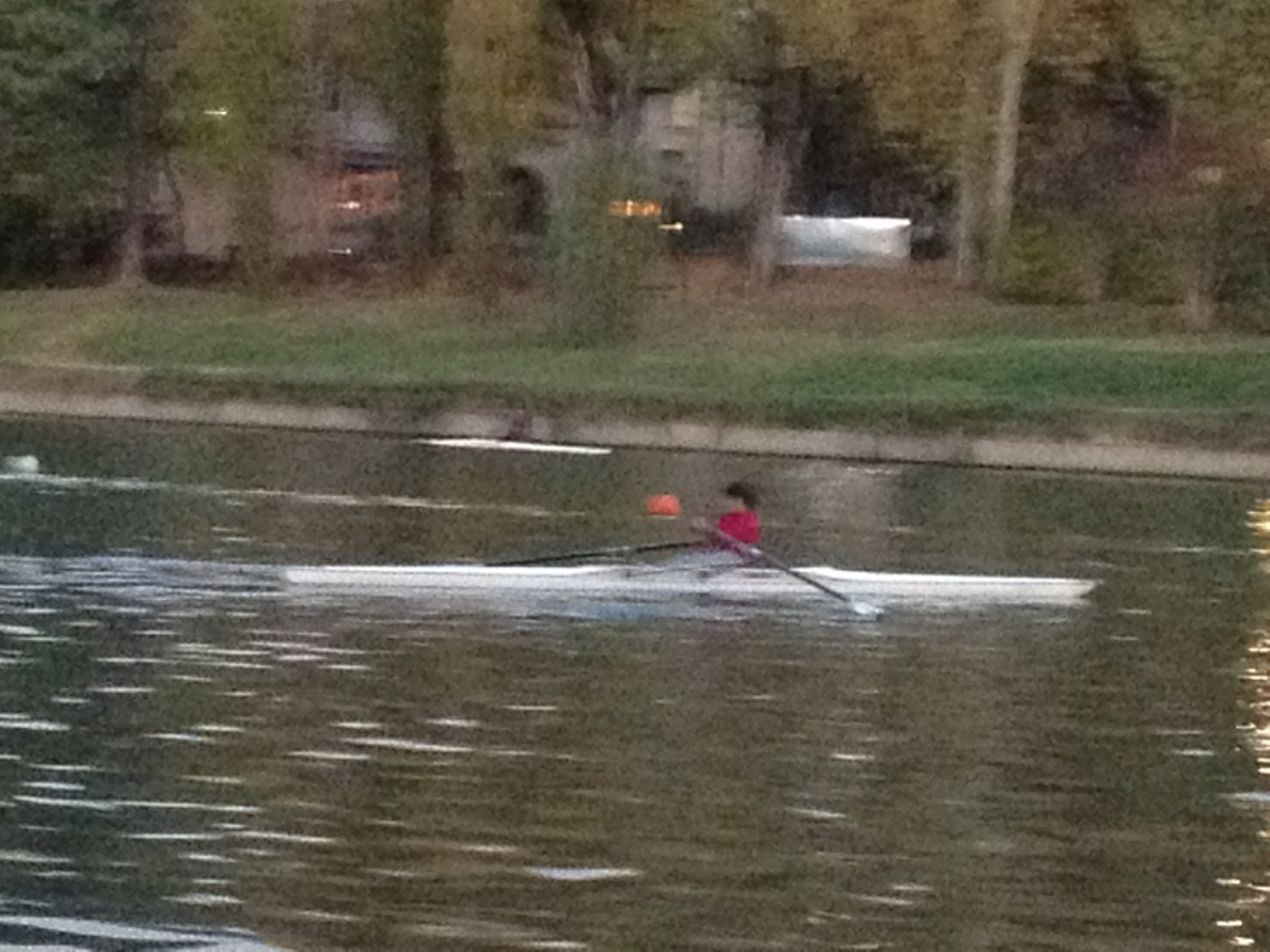 Young sculler in a single - Cerea Rowing Club, Torino Italy